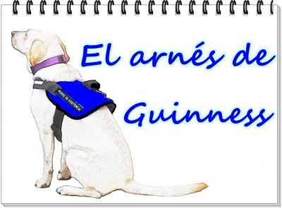 EL ARNÉS DE GUINNESS